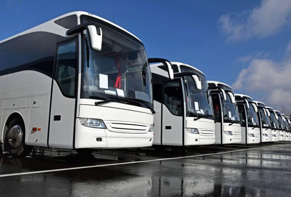 flota autobusów białych